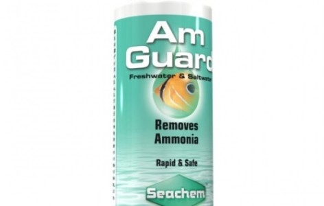 122571_1_n_seachem-liquid-amguard-500x500